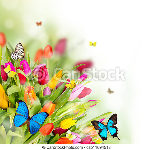 Hermosas flores de primavera con mariposas - csp11894513