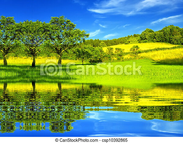 Hermoso ambiente verde - csp10392865
