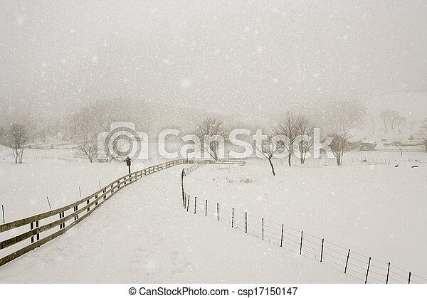 Hermoso paisaje invernal en el sur de Corea Daegwallyeong rancho de ovejas - csp17150147