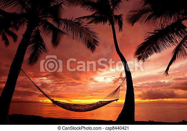 Hermosa puesta de sol de vacaciones, silueta de hamaca con palmeras - csp8440421