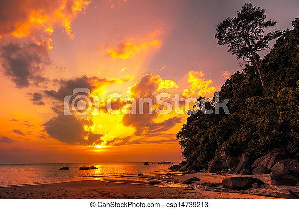 Hermosa puesta de sol tropical - csp14739213