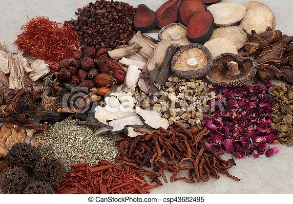 Hierbas chinas tradicionales - csp43682495