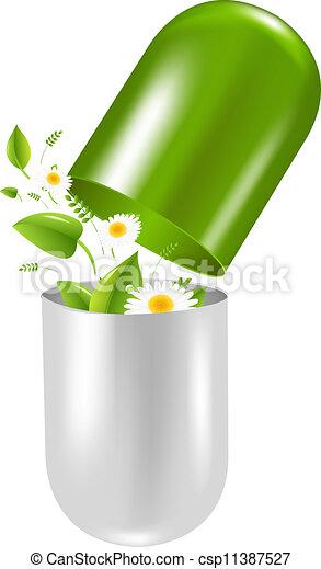 Pasta con hierbas y manzanilla - csp11387527