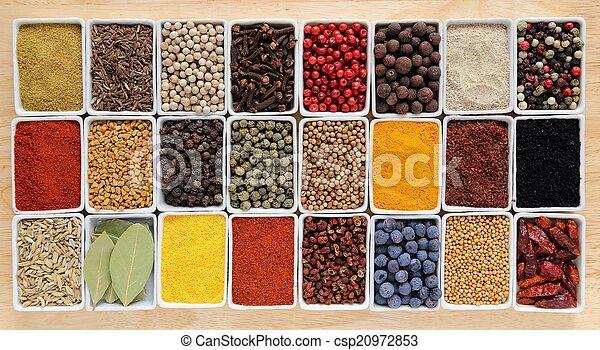 Hierbas y especias. - csp20972853