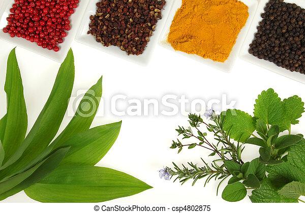 Hierbas y especias - csp4802875