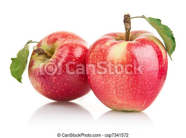 Frutas de manzana verde con hojas - csp7341572