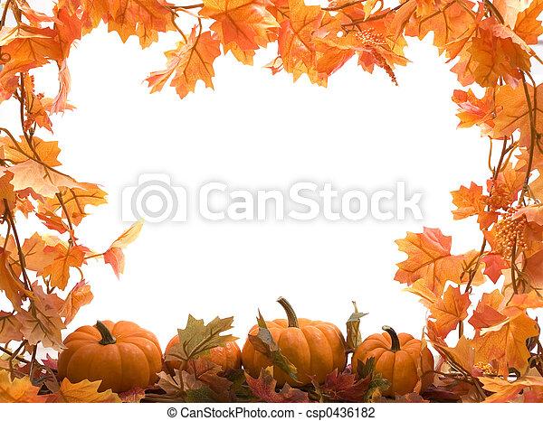 Calabazas con hojas de otoño - csp0436182