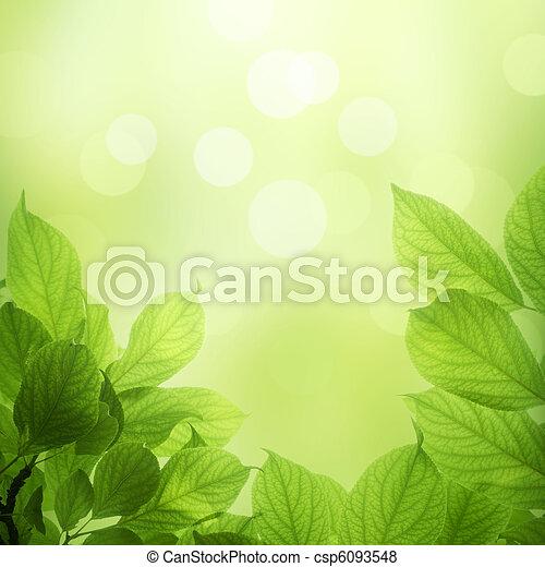 Hojas frescas y verdes - csp6093548