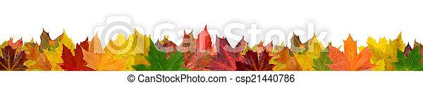 Hojas de otoño - csp21440786