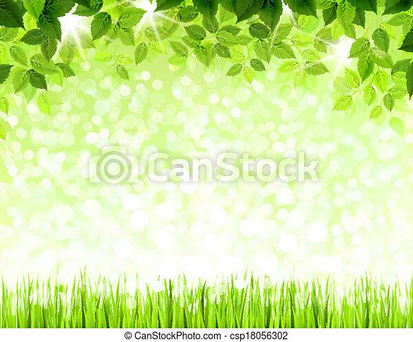 Hojas verdes - csp18056302