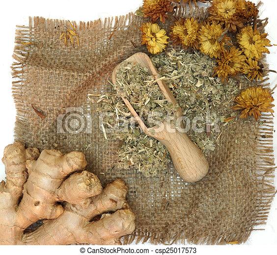 Medicina de homeopatía - csp25017573