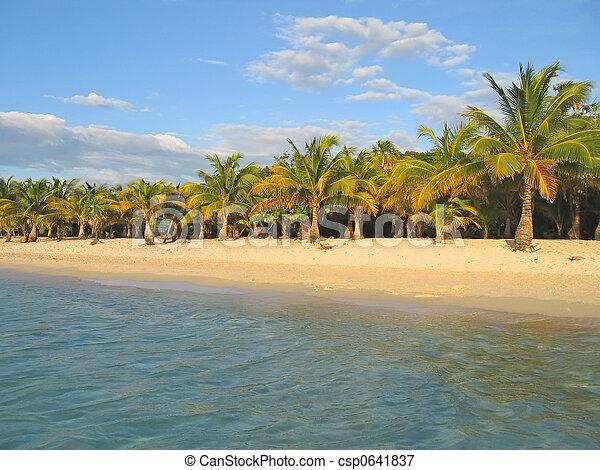 Playa de caraibe tropical con palmera y arena blanca, isla de Roatan, Honduras - csp0641837