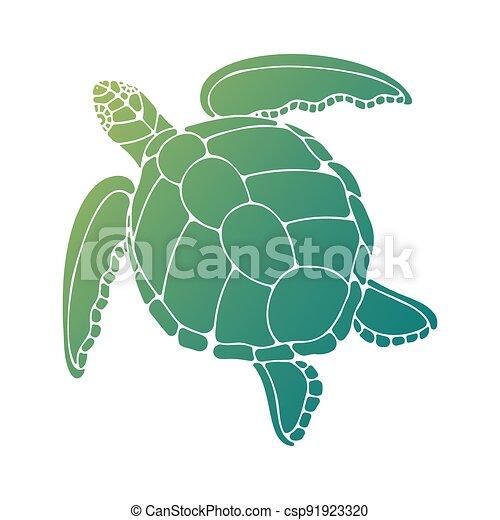 ilustración, tortuga, vector - csp91923320