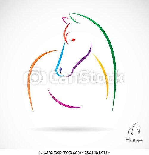 Imágenes de un caballo - csp13612446