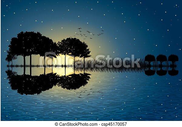 Isla Guitar a la luz de la luna - csp45170057
