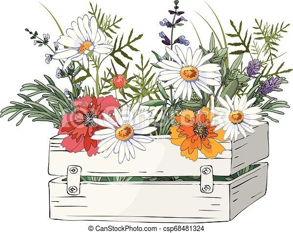 Una caja de madera con hierbas y flores. - csp68481324