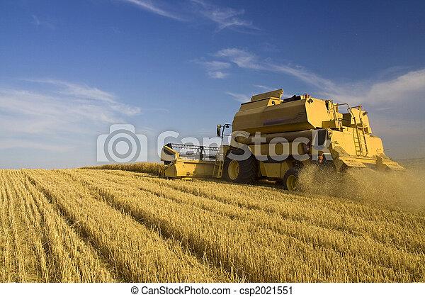 La agricultura se combina - csp2021551