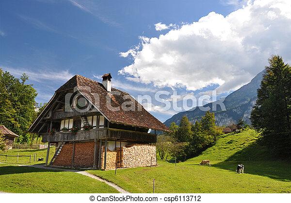La casa de campo suizo tradicional - csp6113712