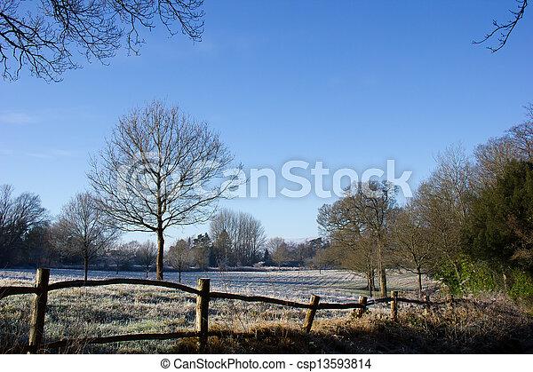 La escena del campo en invierno - csp13593814