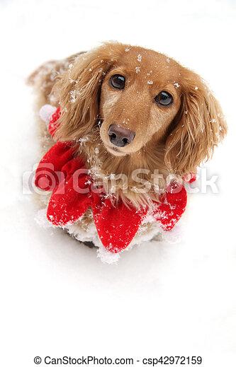 La nieve de Navidad - csp42972159