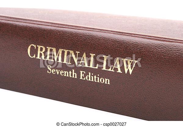 Libro de Derecho Criminal - csp0027027