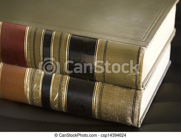 Libros de leyes - csp14394624