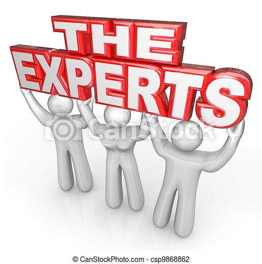 Los expertos profesionales ayudan a resolver problemas - csp9868862