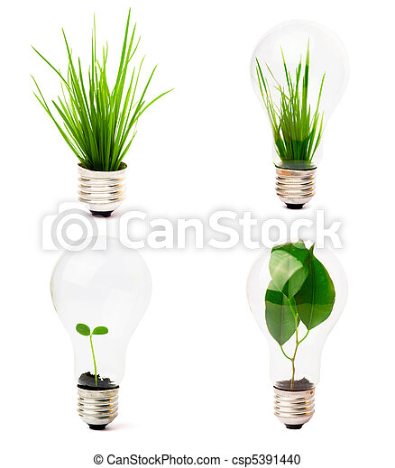 Luces con plantas creciendo dentro - csp5391440