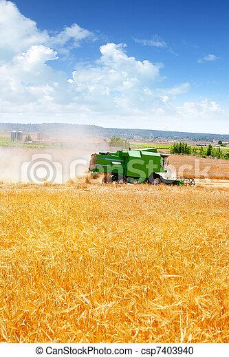 Combina cosechadora de cereales de trigo - csp7403940