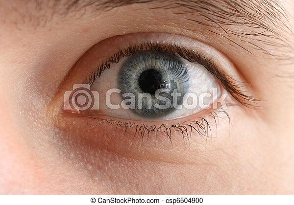 macro de ojos humanos - csp6504900