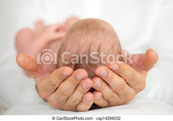 Manos adultas sujetando al bebé recién nacido. - csp14294232