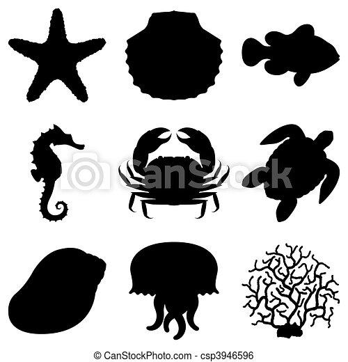 Animales marinos. - csp3946596