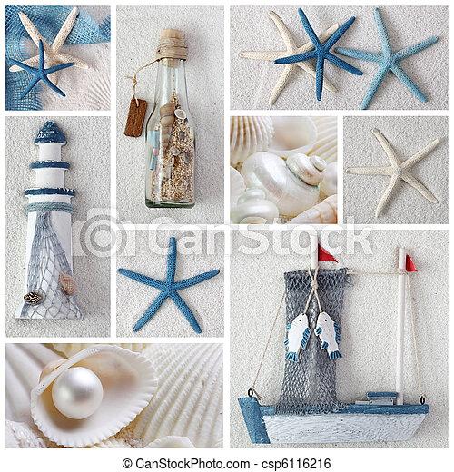 Estrellas marinas - csp6116216