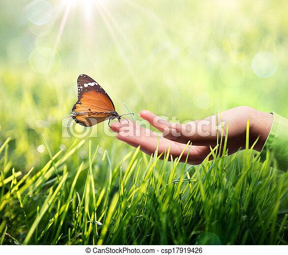 Mariposa en mano sobre la hierba - csp17919426