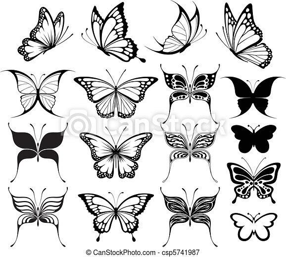 Mariposa - csp5741987