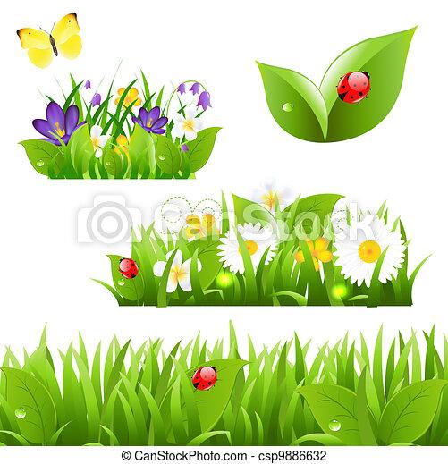 Flores con mariposa de hierba y mariquita - csp9886632