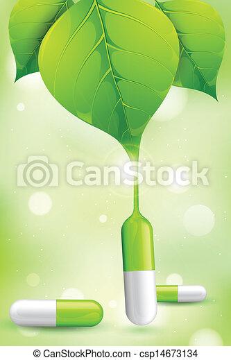 Medicina de hierbas - csp14673134