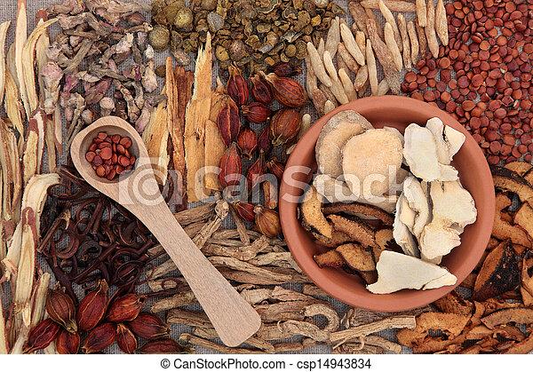 Hierbas medicinales chinas - csp14943834