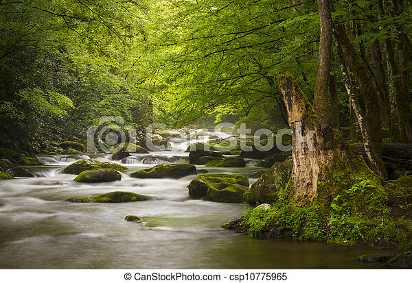 Montañas de humo y paz, parques nacionales, niebla en el río Tremont, relajando paisajes naturales cerca de Gatlinburg TN - csp10775965