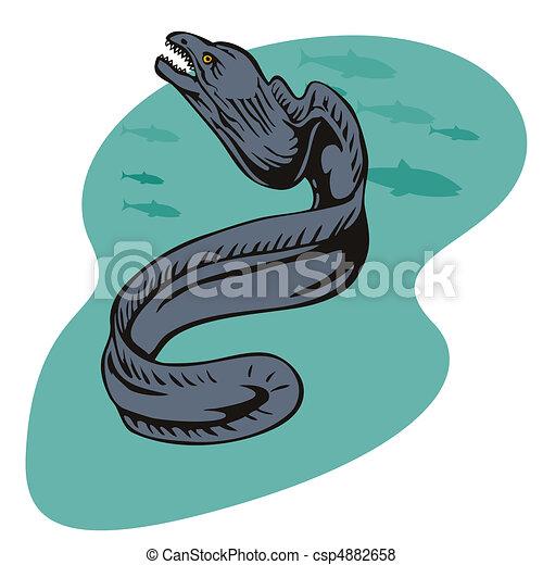anguila gris - csp4882658