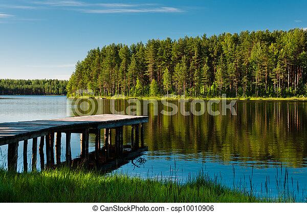 El muelle de madera y el bosque en el lago - csp10010906
