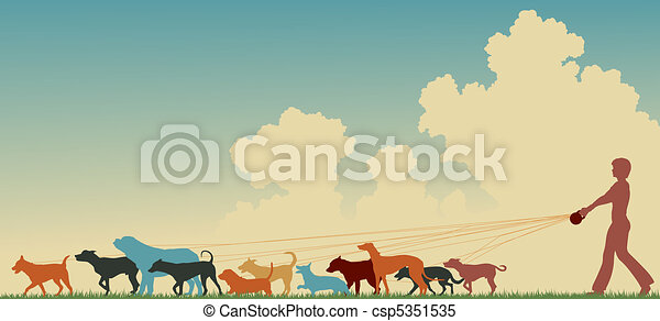 Mujer paseadora de perros - csp5351535