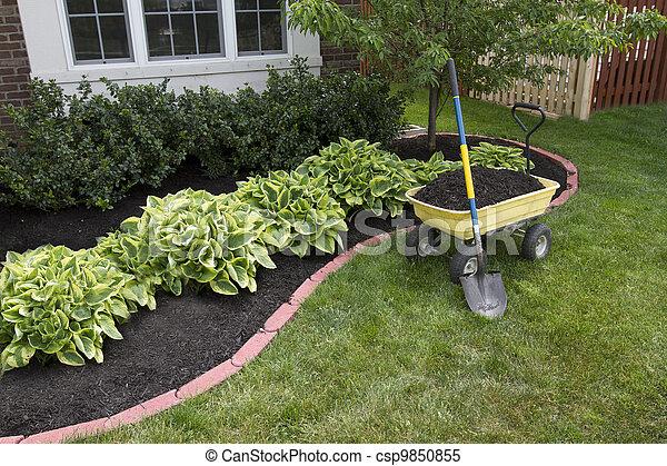 Mulchando alrededor de los arbustos - csp9850855