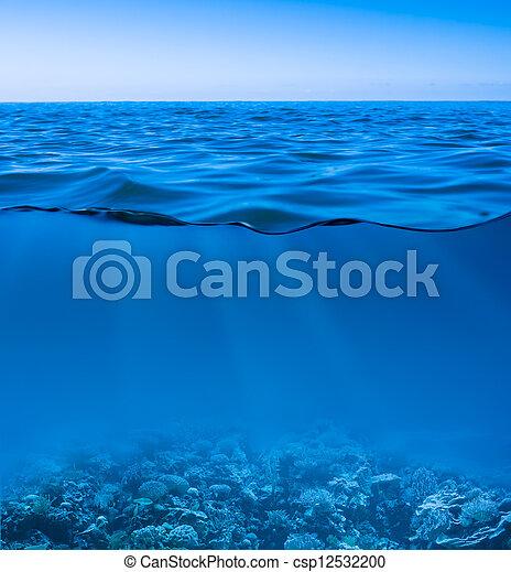 Sigue la calma del agua del mar con el cielo despejado y el mundo submarino descubierto - csp12532200