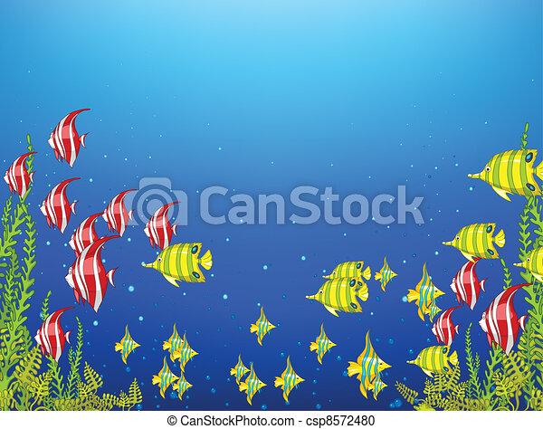 Mundo submarino del océano - csp8572480