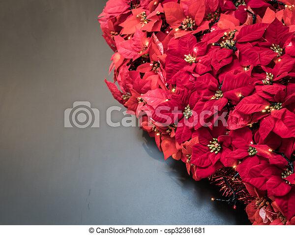 Hojas de Poinsettia. Muestras de Navidad - csp32361681