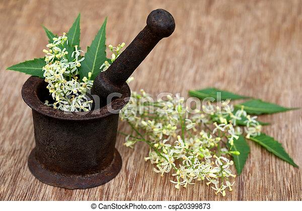 Neem hojas y flores en un viejo mortero - csp20399873