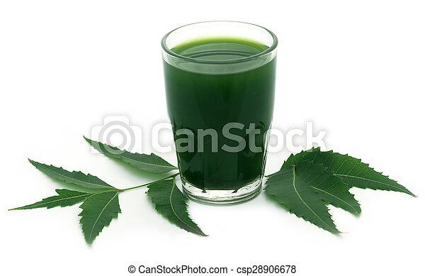 Neem medicinal sale con extracto - csp28906678