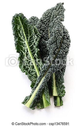 Black kale - csp13476591