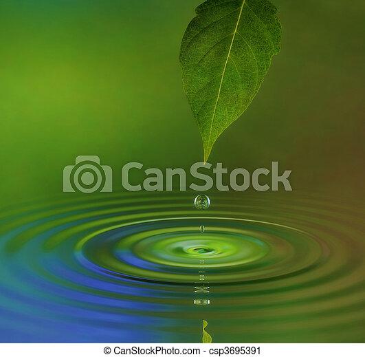 Rizo de agua - csp3695391